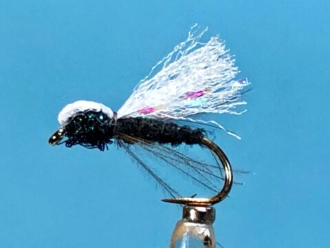 A Fly to Tie and Try May 2021