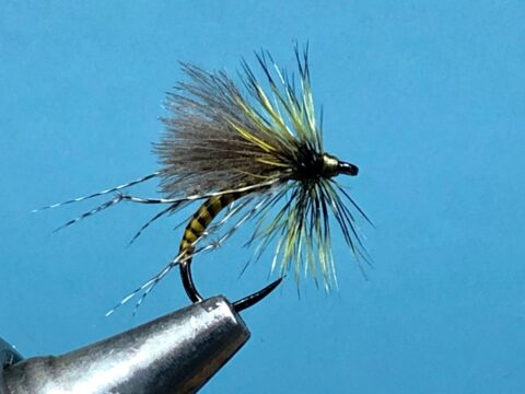 A Fly to Tie and Try this month – August 2021